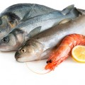 Huile de poisson
