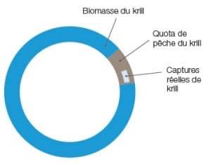 huile de krill biomasse durable